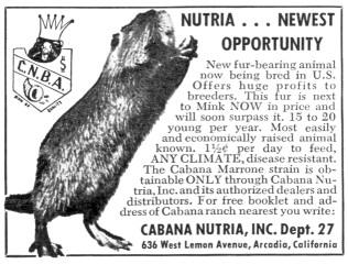 nutria 1958